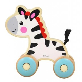 Passeio com a Zebra