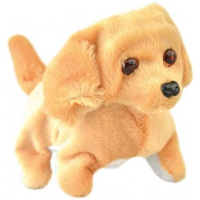 Dog Toy com Movimento